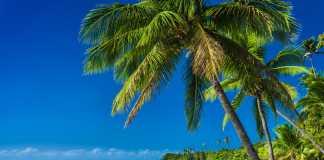 vacanze al mare in inverno isole fiji