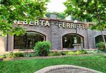 Alberta Ferretti divise alitalia
