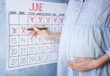 calcolo settimane di gravidanza e corrispondenza mesi