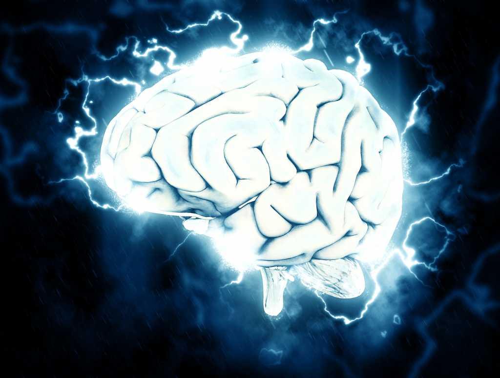 Il cervello risponde meglio con un'alimentazione priva di zuccheri - Fonte: Pixabay