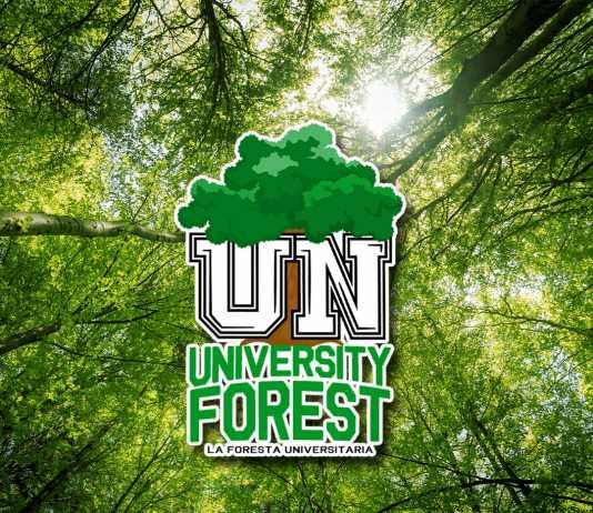 La foresta universitaria